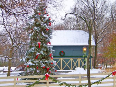 Outside Christmas decorations and barn