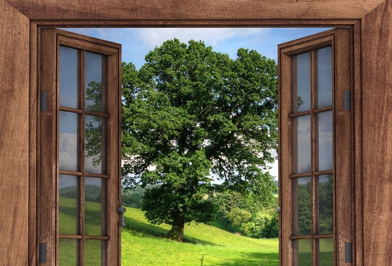 Open window with tree outside