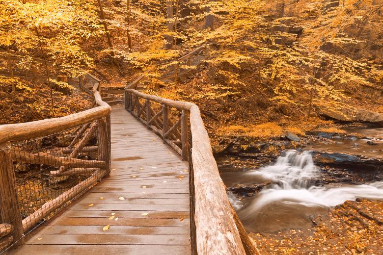 Log railing on bridge over creek in autumn