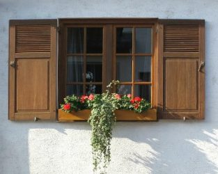 Shutters with flower box