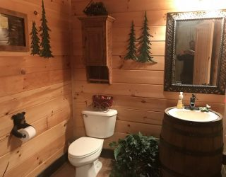 wood walls in log home bathroom