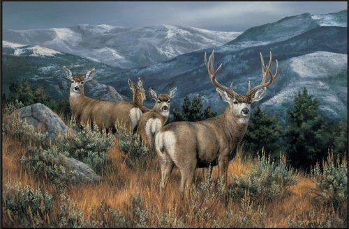 picture quality rug with mule deer on mountain