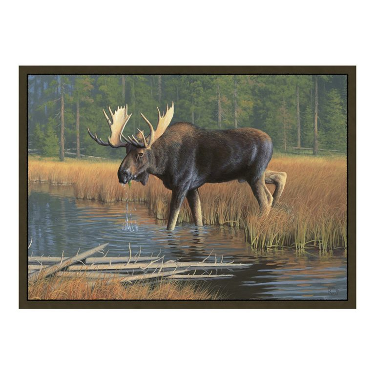 rug with bull moose pictured in a tranquil marsh, with a pine tree forest in the background.