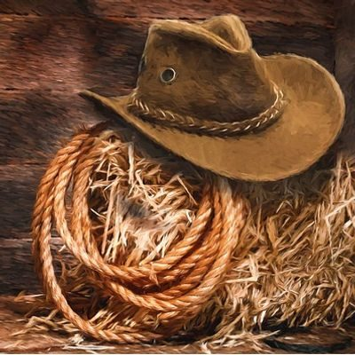 Western hat and saddle on straw bale