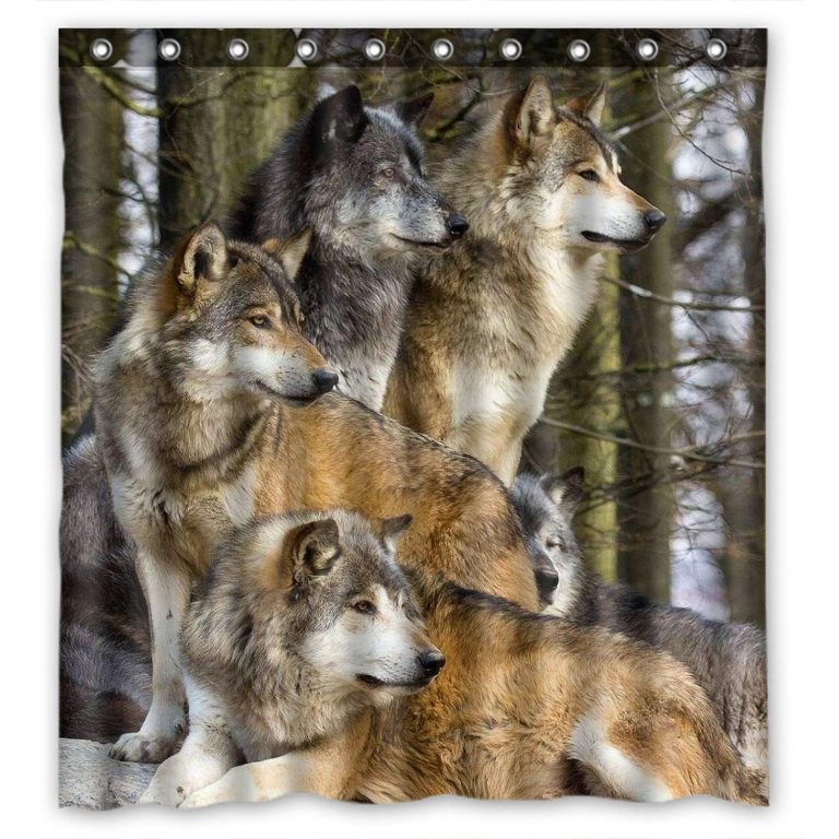 realistic image of wolf pack on alert in the forest