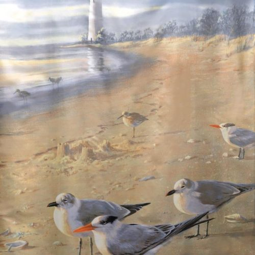 shore birds on the beach with lighthouse on shower curtain